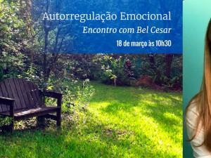 Autorregulação Emocional