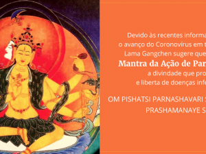 Mantra da Ação de Parnashawari
